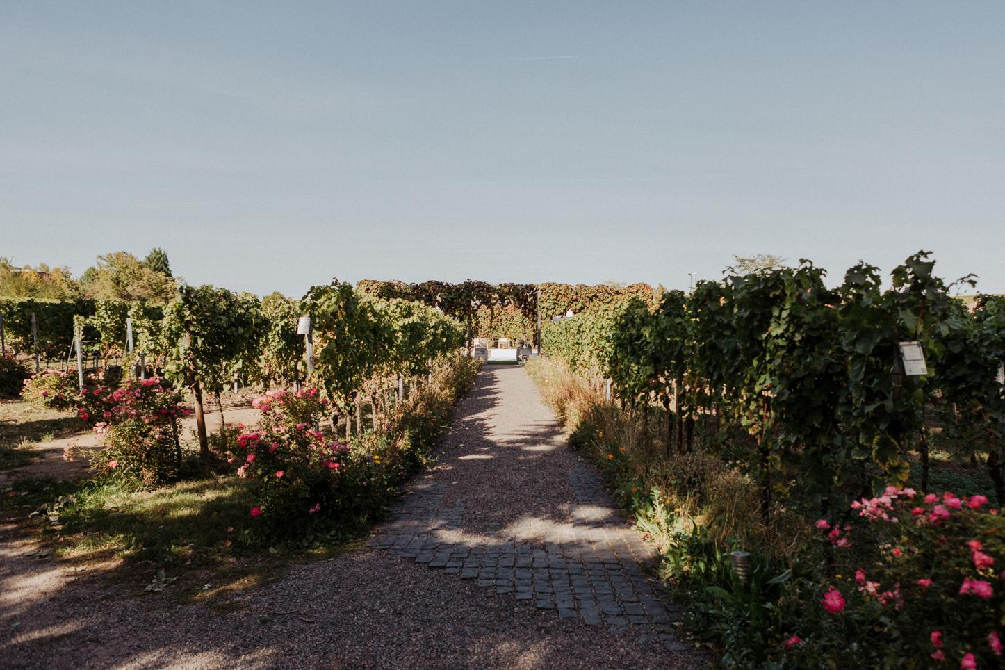 Mediterrane Hochzeitslocation in Bad Dürkheim