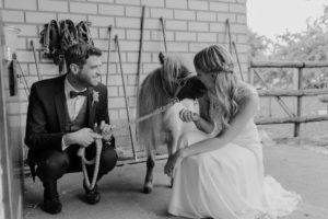 Hochzeitsfotos im Stall mit Pferden