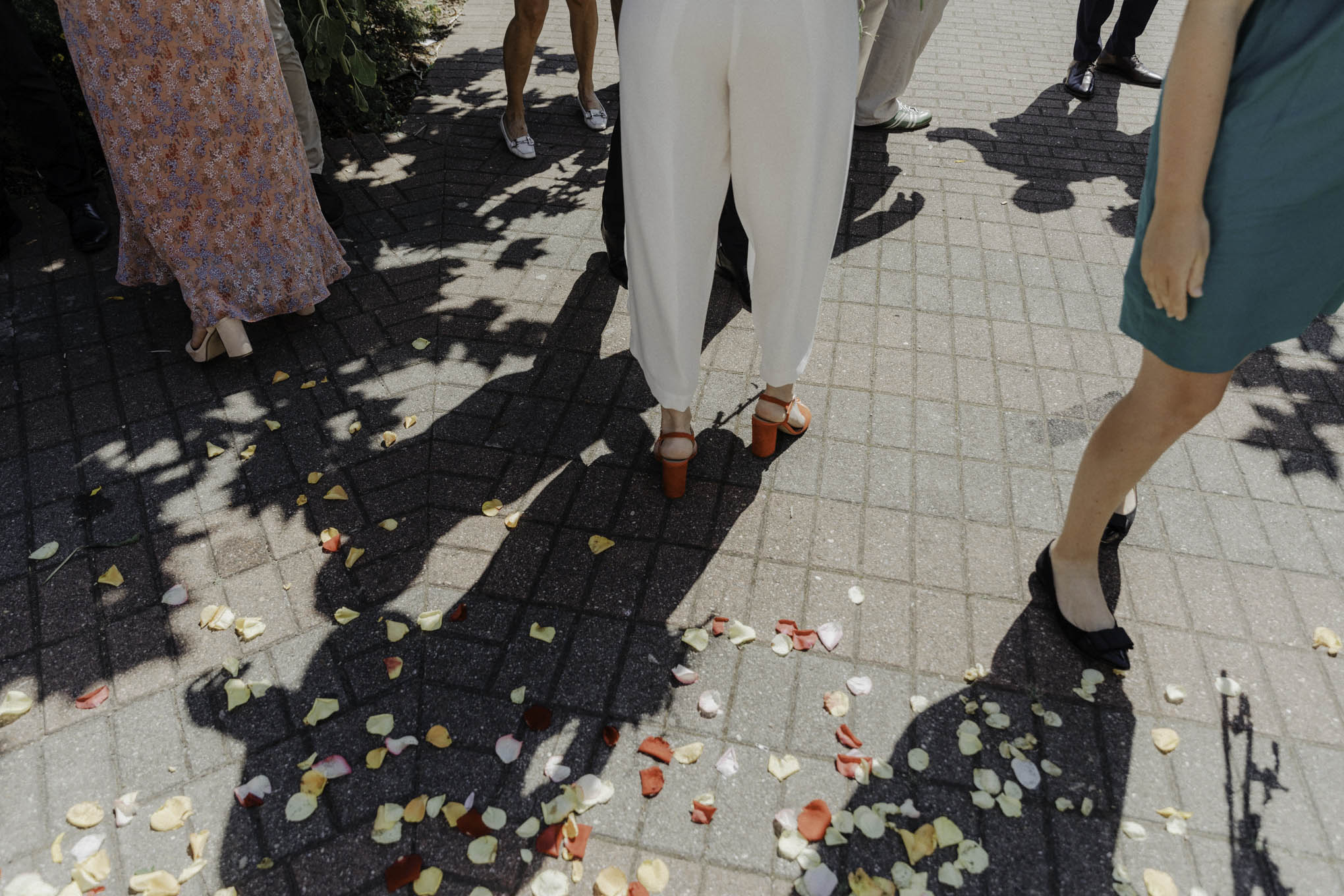 Blütenkonfetti zur Hochzeit